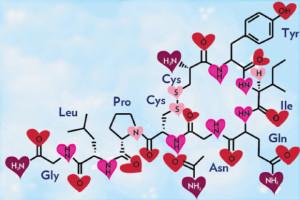 love-hormones