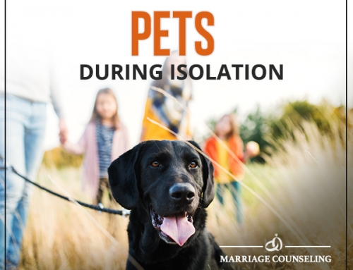 Pets During Isolation